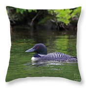 Majestic Loon Throw Pillow