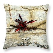 Making Peace With It Throw Pillow