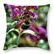 Making Things New Via The Bee Series Throw Pillow