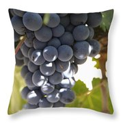 Malbec Grapes On The Vine Throw Pillow