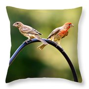 Male And Female House Finch Throw Pillow