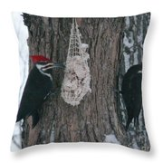Male And Female Pileated Woodpeckers Throw Pillow