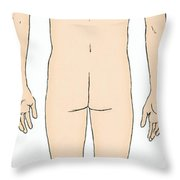 Male, Full Posterior View Throw Pillow