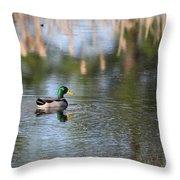 Mallard - Duck - Lonely Guy Throw Pillow