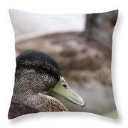 Mallard - Front And Rear Throw Pillow