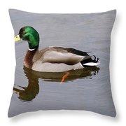 Mallard 1 Throw Pillow