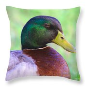 Mallard Drake In Shade Throw Pillow