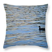 Mallard Duck And Blue Water Throw Pillow by Marianne Campolongo