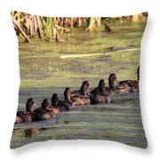 Mallard Ducks In A Row Throw Pillow