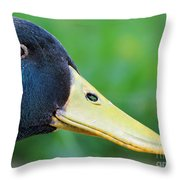 Mallard Masterpiece Throw Pillow