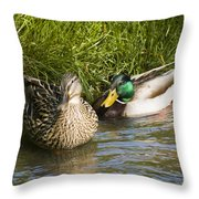 Mallards Nesting Throw Pillow