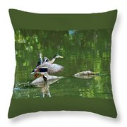 Mallards Taking Off Throw Pillow