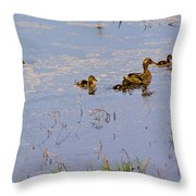 Mama Duck And The Kiddies Throw Pillow