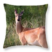 Mama To Be Throw Pillow