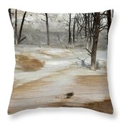 Mammoth Terrace Runoff Throw Pillow