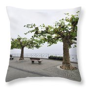 Man With Dog Walking On Empty Promenade With Trees Throw Pillow