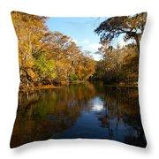 Manatee Springs Throw Pillow