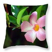 Mandevilla Pink Throw Pillow