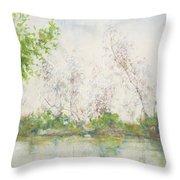 Mangrove Swamp Throw Pillow