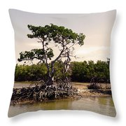Mangroves In The Everglades Throw Pillow