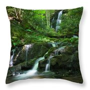 Mannis Branch Falls Throw Pillow