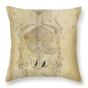 Mansurs Anatomy, Skeletal System, 15th Throw Pillow