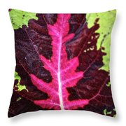 Many Leaves Of Coleus Throw Pillow