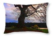Maple Evening Throw Pillow