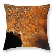 Maple Leaf Frosted Throw Pillow