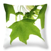 Maple Leaves And Seeds Throw Pillow