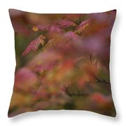 Maple Leaves Are Bright Red On A Rainy Throw Pillow