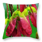 Maple Seeds In The Rain Throw Pillow