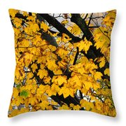 Maple Tree Panorama Throw Pillow