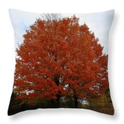 Maples In The Meadow Throw Pillow