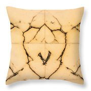 Marble Face Throw Pillow