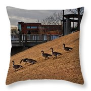 March To The Water Throw Pillow
