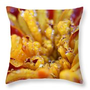Marigold With Water Drops Throw Pillow