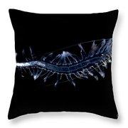 Marine Worm Throw Pillow