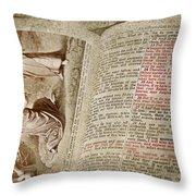 Mark 12 Throw Pillow