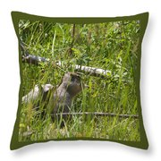 Marmot Throw Pillow