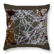 Marsh Globes Throw Pillow