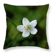 Marsh Grass-of-parnassus Throw Pillow