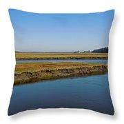 Marsh In Maine Throw Pillow
