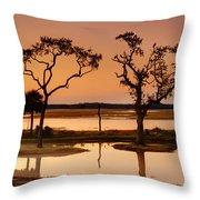 Marsh Morning Throw Pillow
