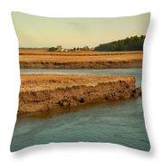 Marsh Of Pine Point Throw Pillow
