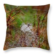 Marsh Spider Web Throw Pillow
