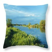 Marshlands In Spring, Unteres Odertal Throw Pillow