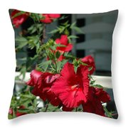 Martha's Vineyard Red Hibiscus And Porch Throw Pillow