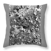 Martian Carbon Dioxide Crystals Throw Pillow