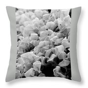 Martian Co2 Crystals Throw Pillow